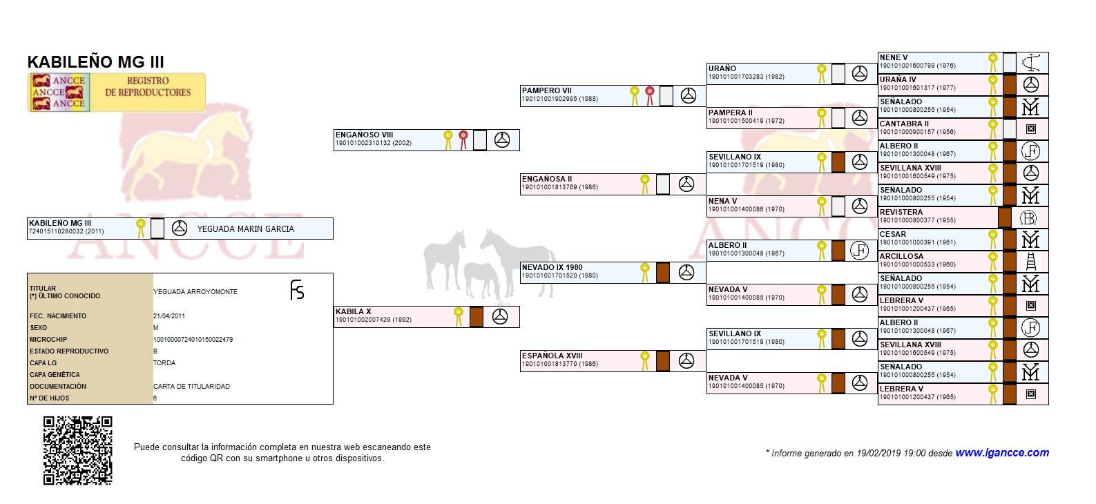 Kabileño MG III GenealogíaOK