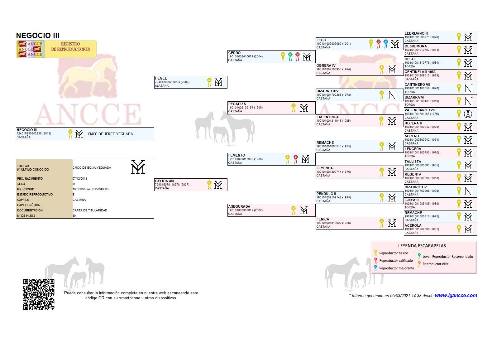 Negocio III Genealogía
